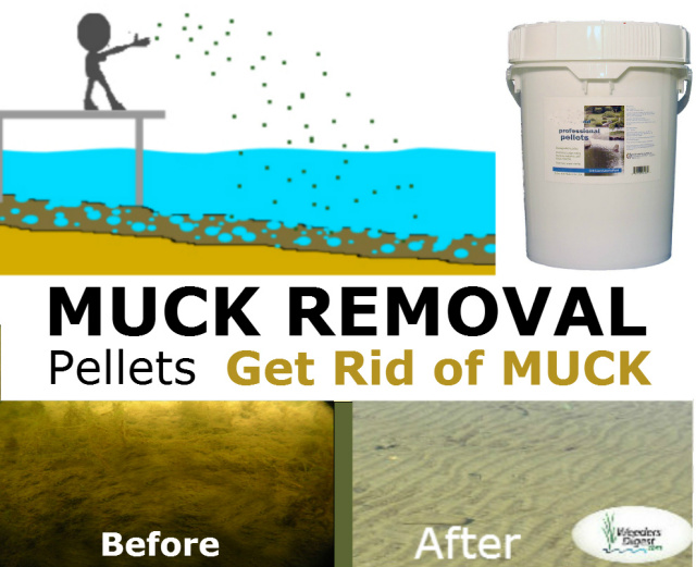 Weeder Digest Lake Pond Muck removal tools products solutions